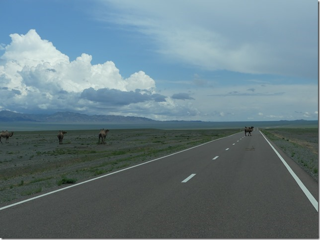 De Naranbulag à Songino - Itinéraire T3 (38)