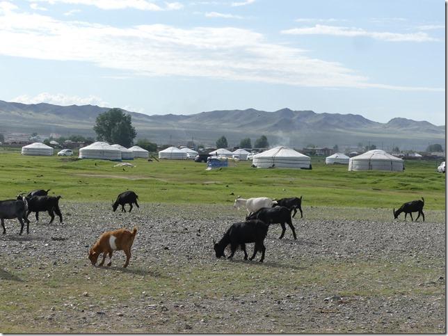 Khovd campement (120)