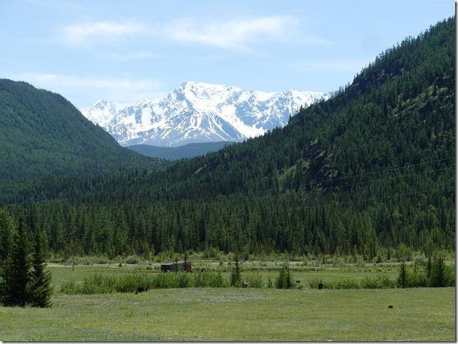 Sur la route - Altaï (102)