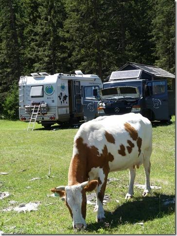 Sur la route - Altaï - bivouac (9)