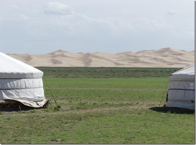 Désert du Gobi - bivouac dunes de Khongoryn Els (13)