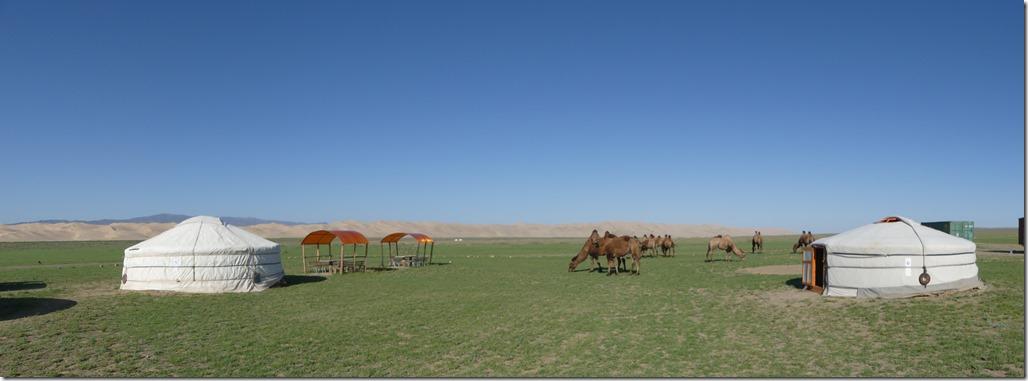 Désert du Gobi - bivouac dunes de Khongoryn Els (16)
