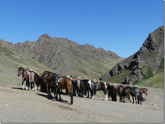 Désert du Gobi -Canyon Yoliin Am (5)