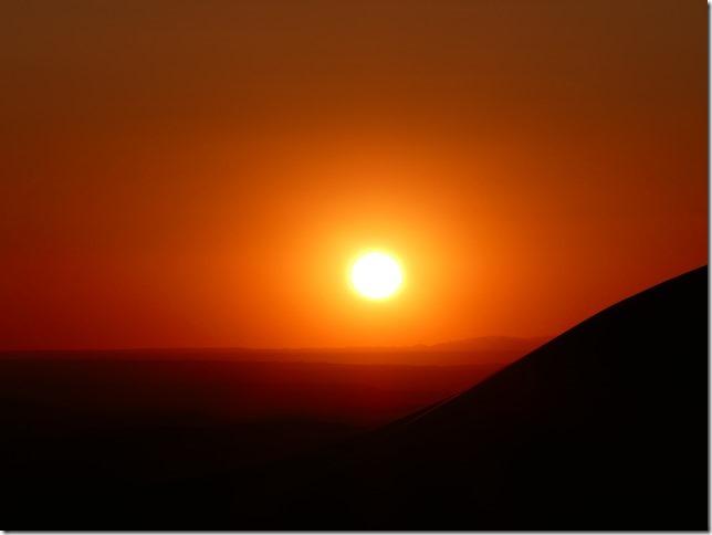 Désert du Gobi - Dunes de Khongoryn Els (113)