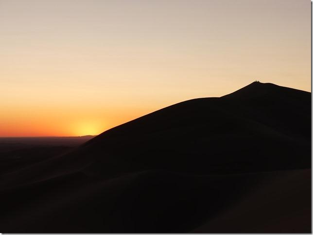 Désert du Gobi - Dunes de Khongoryn Els (118)