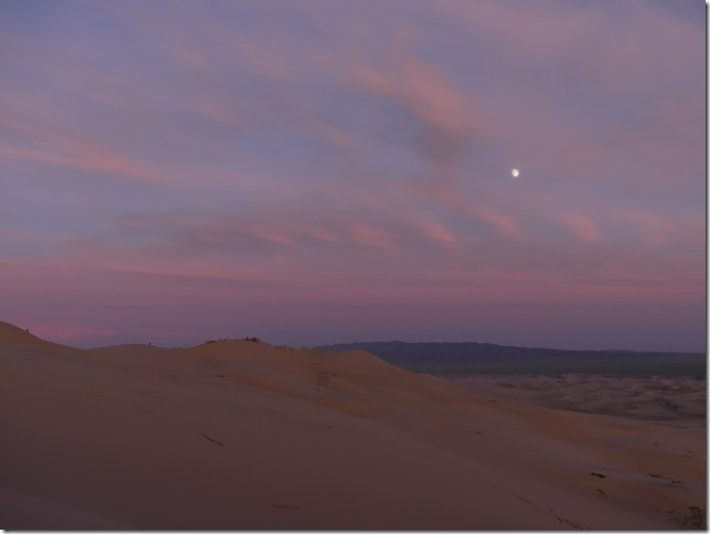 Désert du Gobi - Dunes de Khongoryn Els (119)