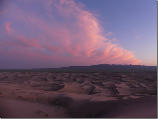 Désert du Gobi - Dunes de Khongoryn Els (122)