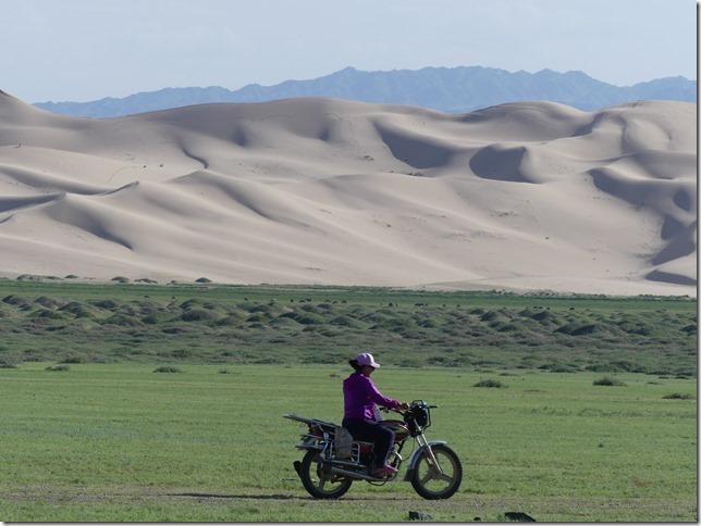 Désert du Gobi - Dunes de Khongoryn Els (12)
