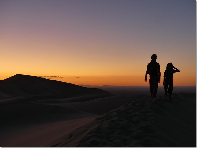 Désert du Gobi - Dunes de Khongoryn Els (134)