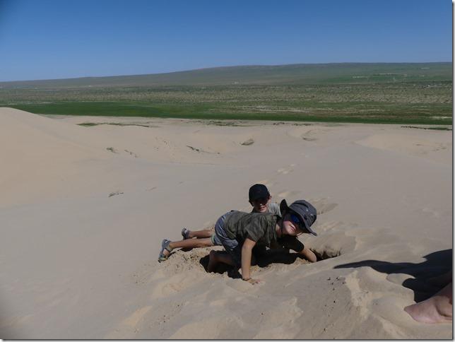 Désert du Gobi - Dunes de Khongoryn Els (184)