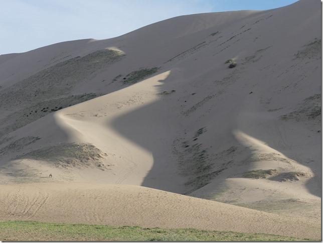 Désert du Gobi - Dunes de Khongoryn Els (21)