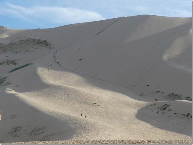 Désert du Gobi - Dunes de Khongoryn Els (23)
