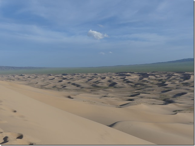 Désert du Gobi - Dunes de Khongoryn Els (48)