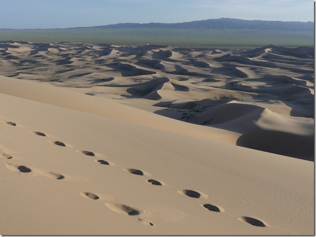 Désert du Gobi - Dunes de Khongoryn Els (69)