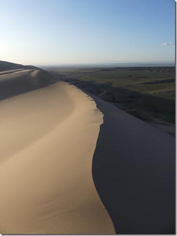 Désert du Gobi - Dunes de Khongoryn Els (80)