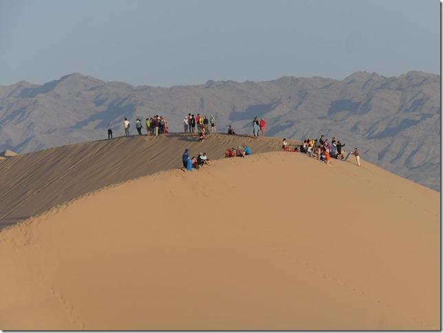 Désert du Gobi - Dunes de Khongoryn Els (89)