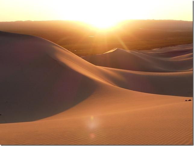 Désert du Gobi - Nuit dans les dunes de Khongoryn Els (72)