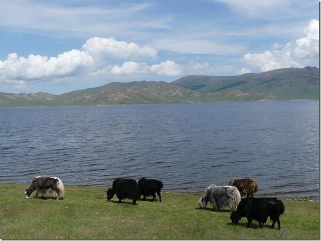 Lac Blanc - T3 (26)