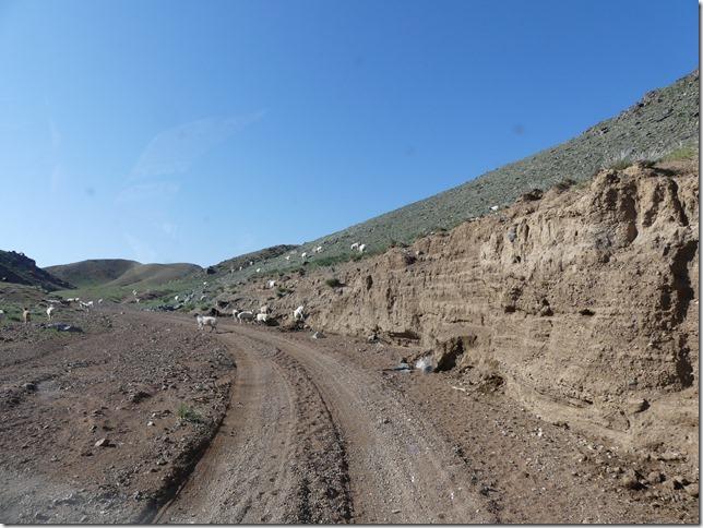 Sur la route du Gobi (40)