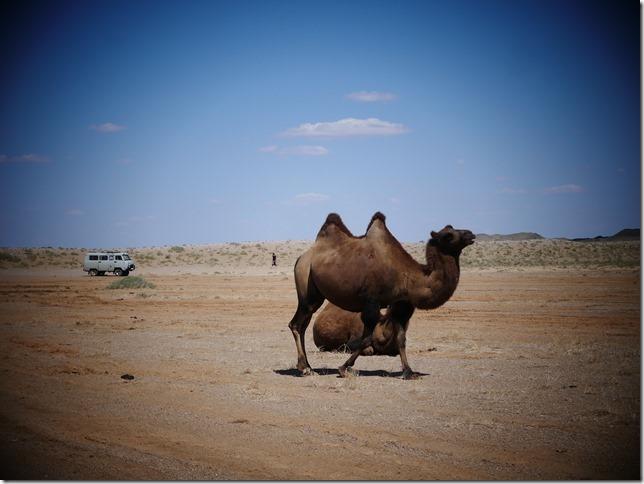 Sur la route du Gobi (92)