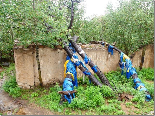 Sur la route du Gobi - Baga Gazriin Chuluu (79)