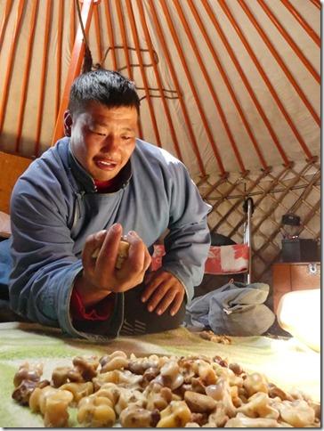 Sur la route du Gobi - chez les éleveurs nomades (109)