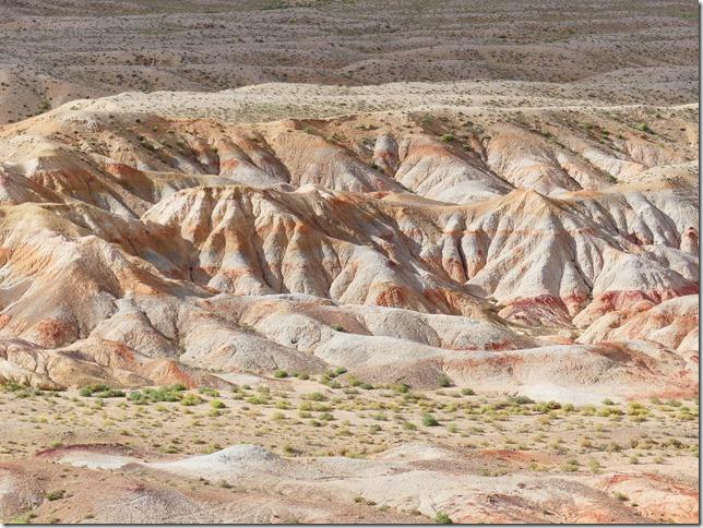 Sur la route du Gobi - falaises de Tsagaan suvarga  (12)