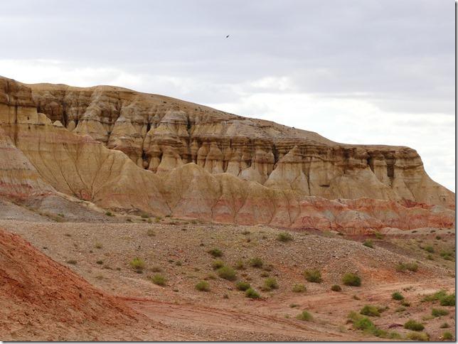 Sur la route du Gobi - falaises de Tsagaan suvarga  (29)
