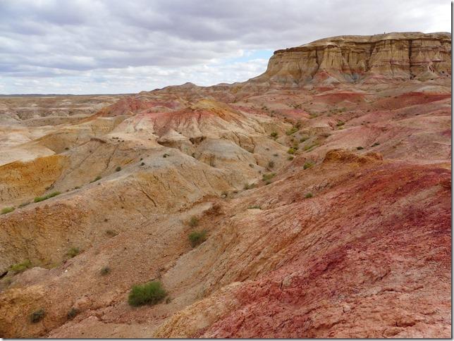 Sur la route du Gobi - falaises de Tsagaan suvarga  (38)