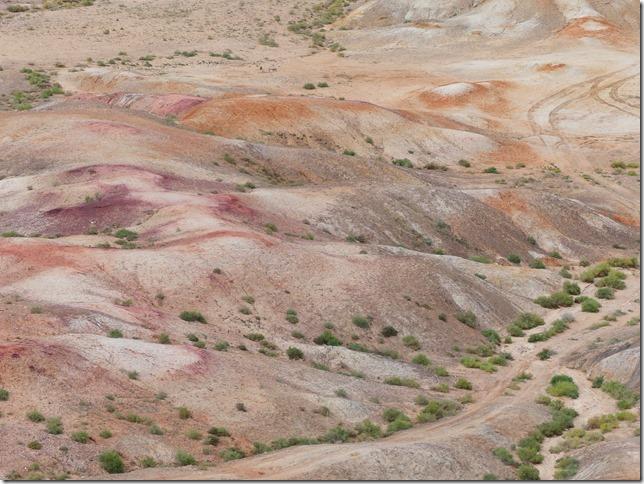 Sur la route du Gobi - falaises de Tsagaan suvarga  (7)