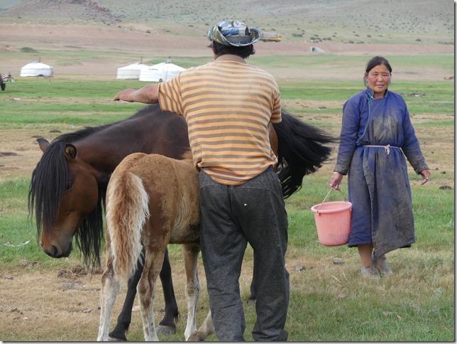 Tosontserleg - Camp de Mongols - T3  (14)