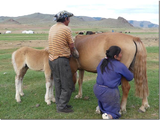 Tosontserleg - Camp de Mongols - T3  (9)