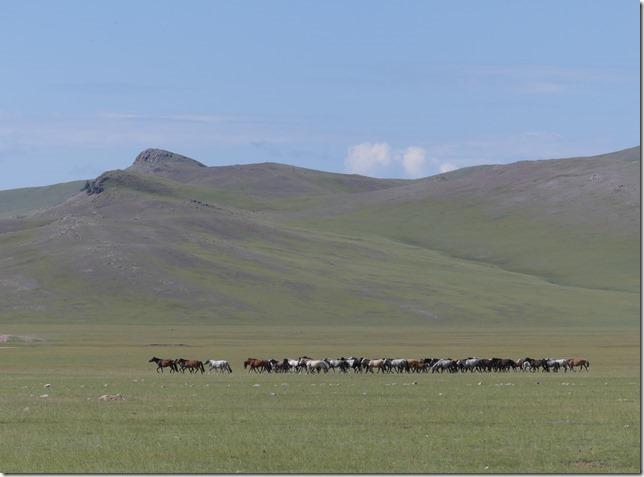 Vallée de la Tamir - K4 (57)