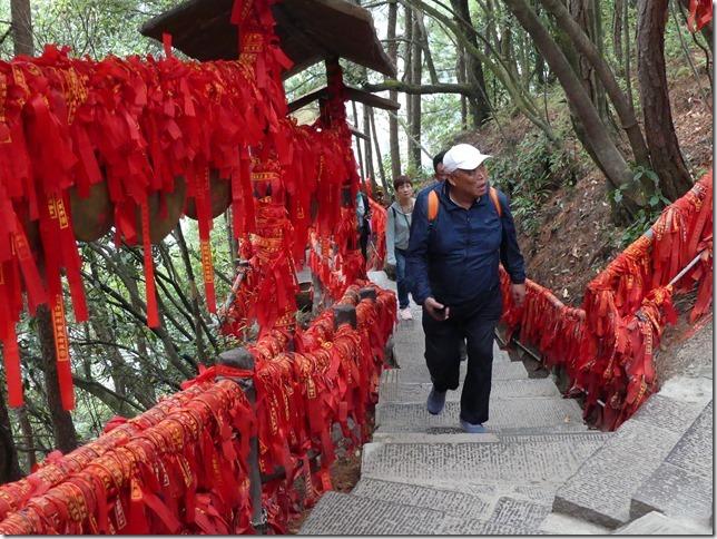 Parc naturel Zhangjiaije (121)