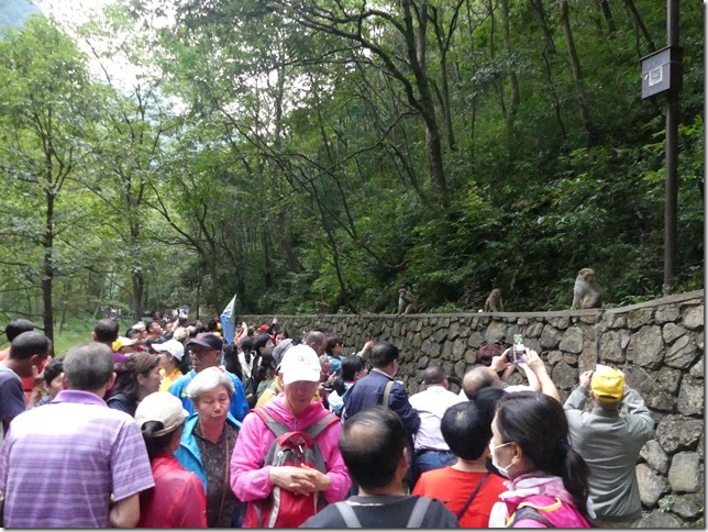 Parc naturel Zhangjiaije (152)