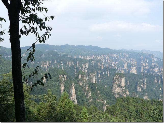 Parc naturel Zhangjiaije (210)