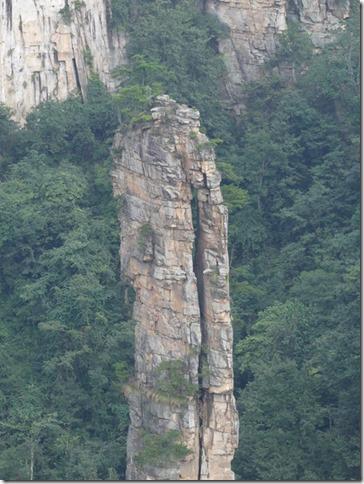 Parc naturel Zhangjiaije (215)