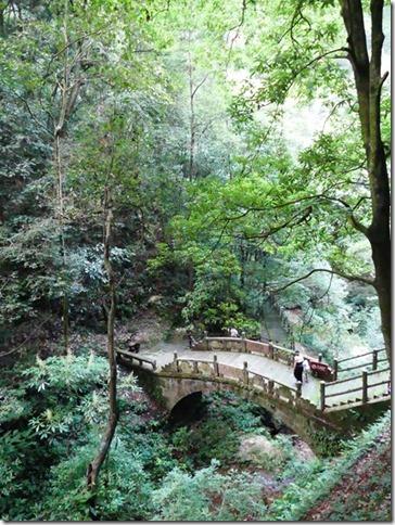 Parc naturel Zhangjiaije (248)