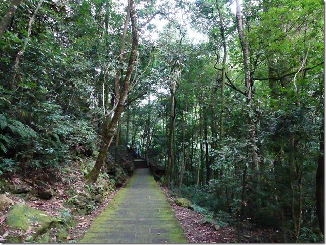 Parc naturel Zhangjiaije (251)