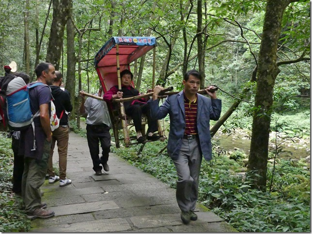 Parc naturel Zhangjiaije (45)