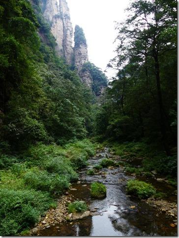 Parc naturel Zhangjiaije (47)