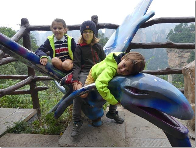 Parc naturel Zhangjiaije (83)
