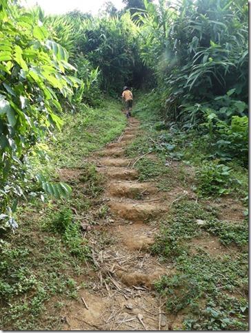Nong Khiaw - balade au viewpoint (5)