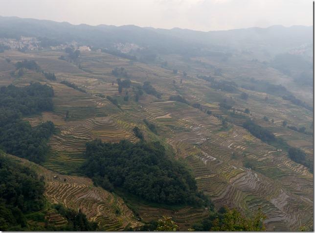 Rizières en terrasse Yuanyang (10)