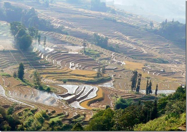 Rizières en terrasse Yuanyang (121)