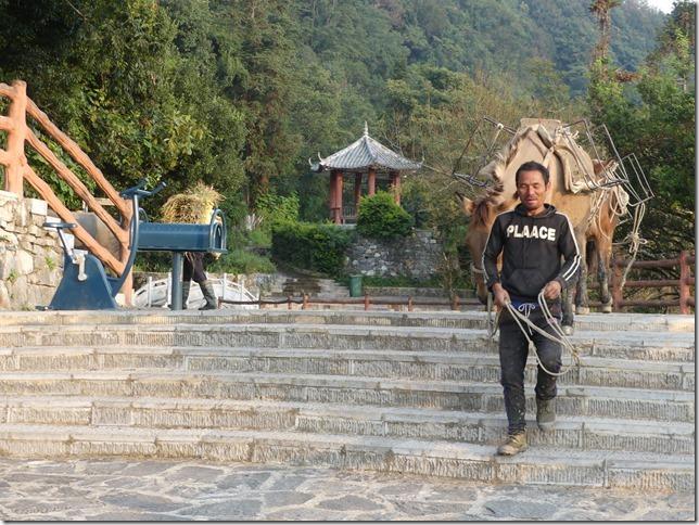 Rizières en terrasse Yuanyang (164)