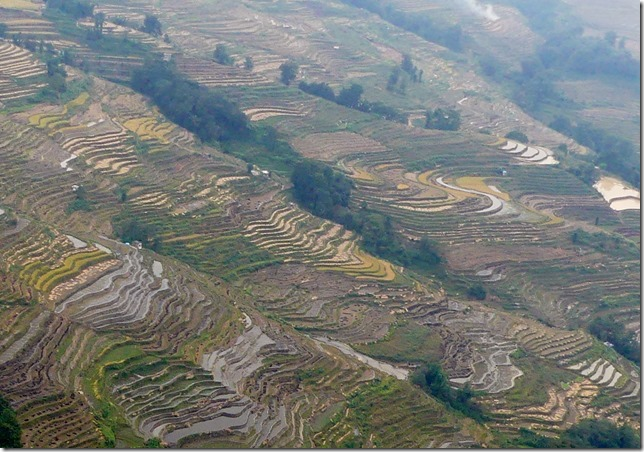 Rizières en terrasse Yuanyang (16)