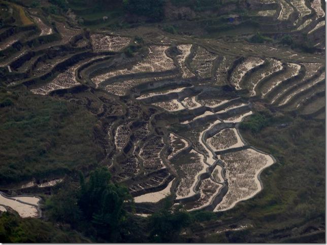 Rizières en terrasse Yuanyang (175)