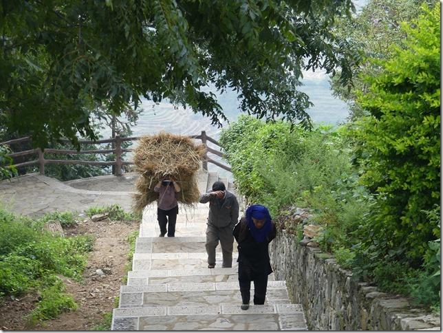Rizières en terrasse Yuanyang (26)