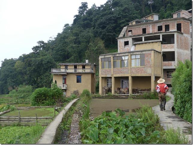 Rizières en terrasse Yuanyang (46)